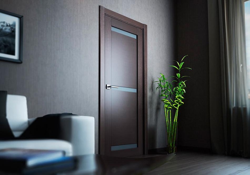 дверь в интерьере-1
